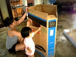 The little pigs who built a house of cardboard