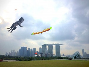 Flying free at the Marina Barrage