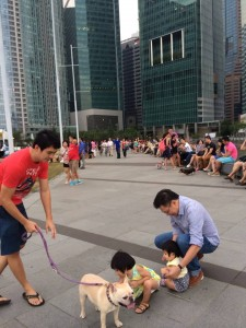 We love programmes like 8 Days' Pets' Day Out at Marina Bay